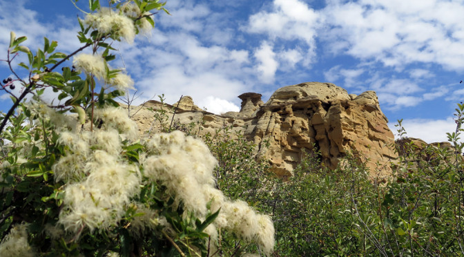 Writing-on-Stone Provincial Park: Ancient art in the Badlands