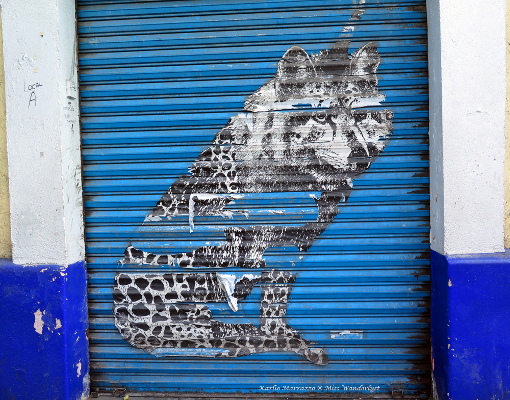 Mexicn street art of a wolf against a blue background