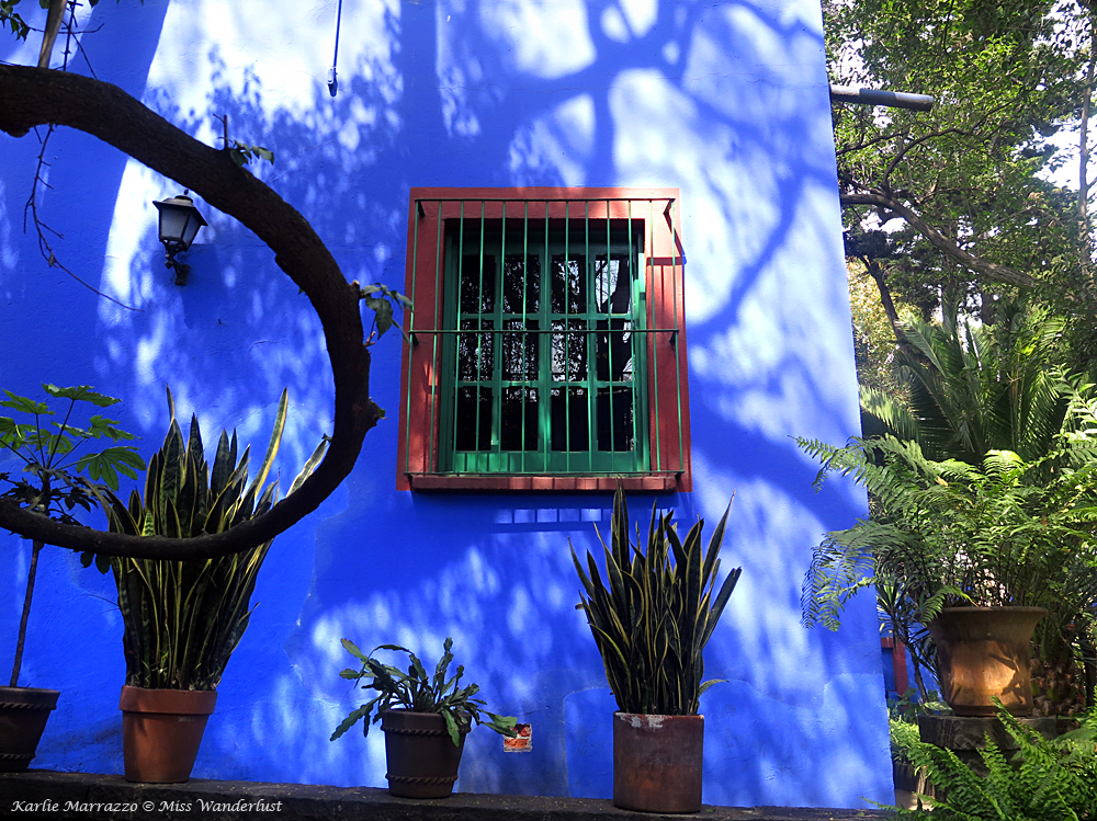 A bright blue wall with a small window, surrounded by potted cacti and plants at La Casa Azul in Mexico City.