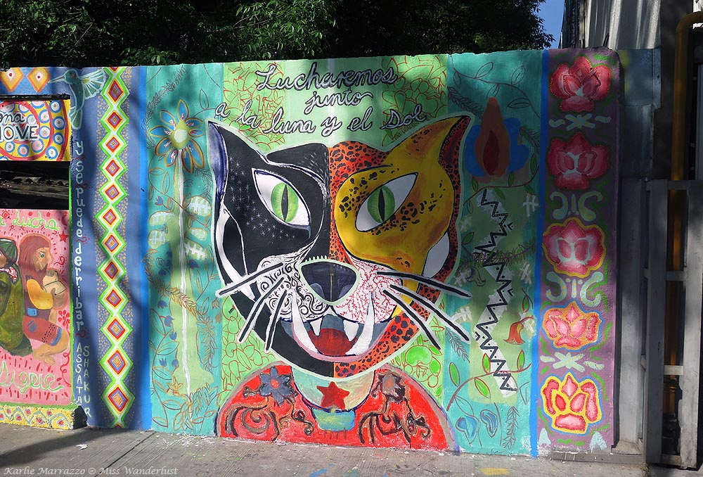 Vibrantly coloured street art in Mexico City depicting an orange and black cat against a green background with writing.