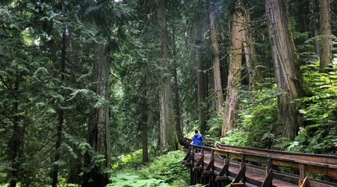 Take on Prince George, the heart of Northern BC