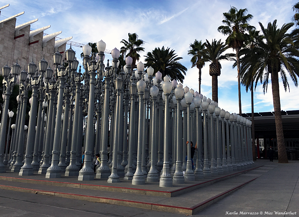 Dozens of street lights for an art installation outside of the Los Angeles County Museum of Art. There are palm trees and blue sky in the background