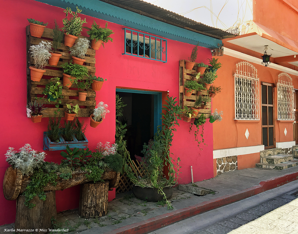 the outside wall of a bright pink building with pots of flowers on it