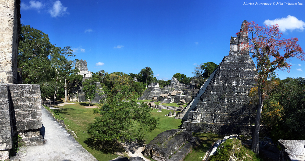 anicent mayan pyramids set in lush greenery against a blue sky